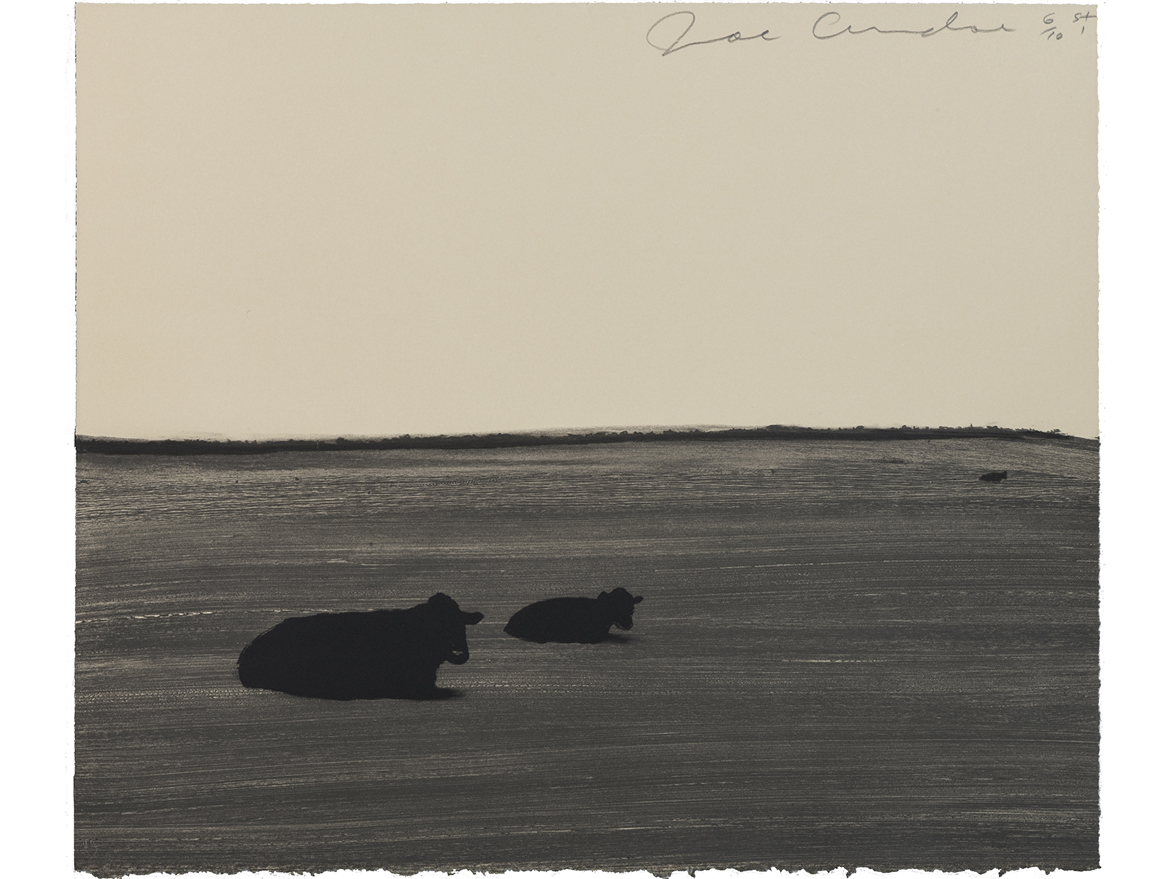Untitled (3 Cows)